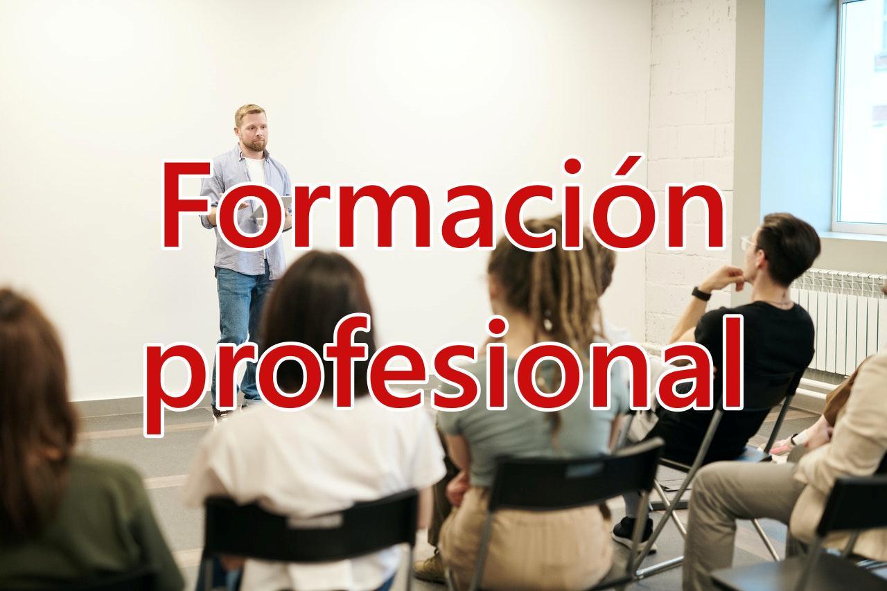 formacion profesional 2