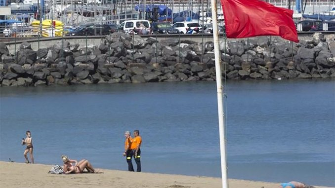 Вблизи побережья острова Gran Canaria тоже плавает... бактерия