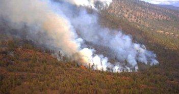 """Огонь на юге Тенерифе уничтожил более 200 гектаров, считают, что кто-то """"приложил руки"""""""