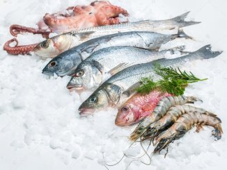 Ciguatera в 10 процентах полученной для анализа рыбы на Канарах