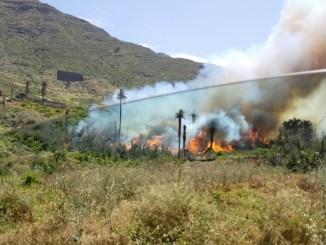 Испуг на Тенерифе: пожарные 7 часов боролись с огнём на севере острова
