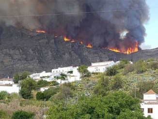На Канарских островах объявлено предупреждение из-за максимальных температур