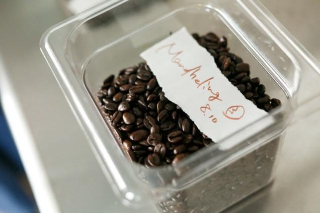 まりちゃんの焙煎したコーヒーが。美味しそうな色!そして香り!!