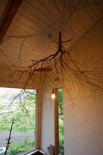 大きな木の枝のシャンデリア!
