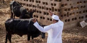 President Muhammadu Buhari Wants More Nigerians To Work In Agriculture