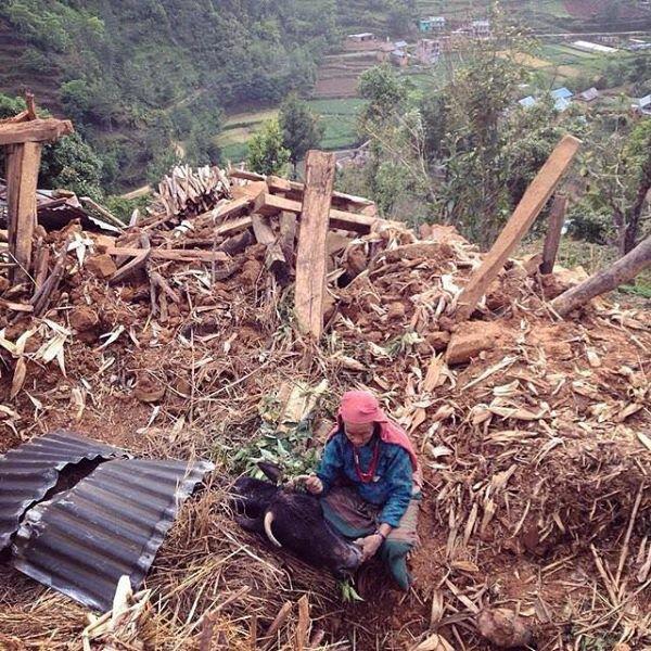 Nepal farmer