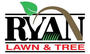Best Lawn Care in KC
