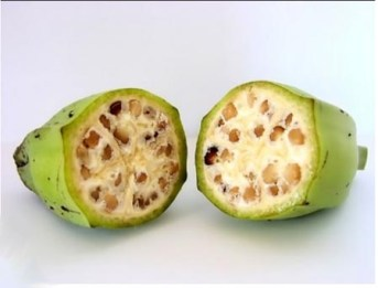 الموز - ifarasha
