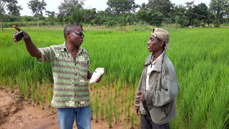 A District Agricultural Officer discusses with a smallholder rice farmer his impressions about the small-size fertilizer packages