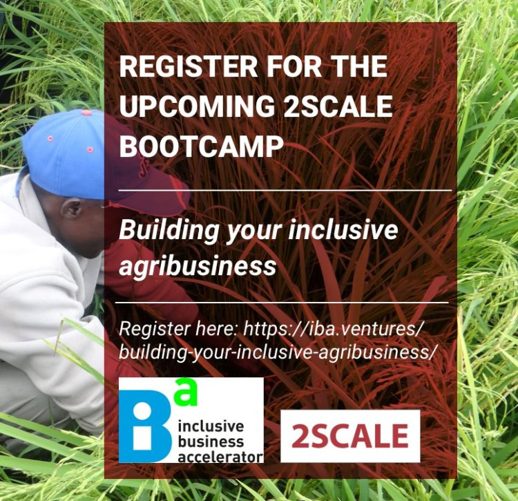 Boot Camp 2scale 2017