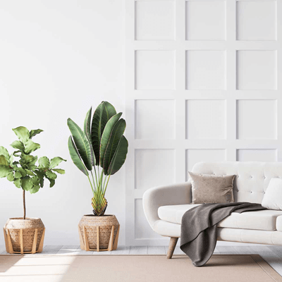 home-staging-virtual-001
