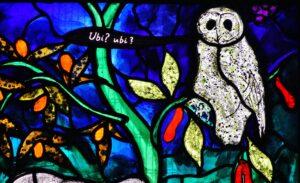 5-owl