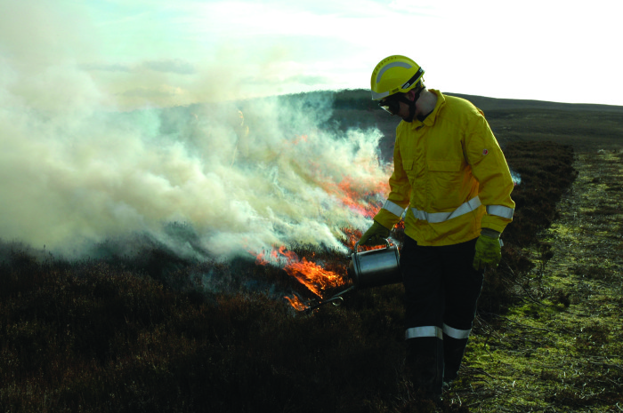 Responding to wildfire risk in Northumberland UK_IFF Magazine_MDM Publishing (4)