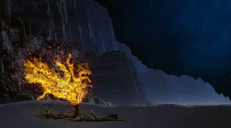 """""""Hineini"""" – Answering the Burning Bush"""