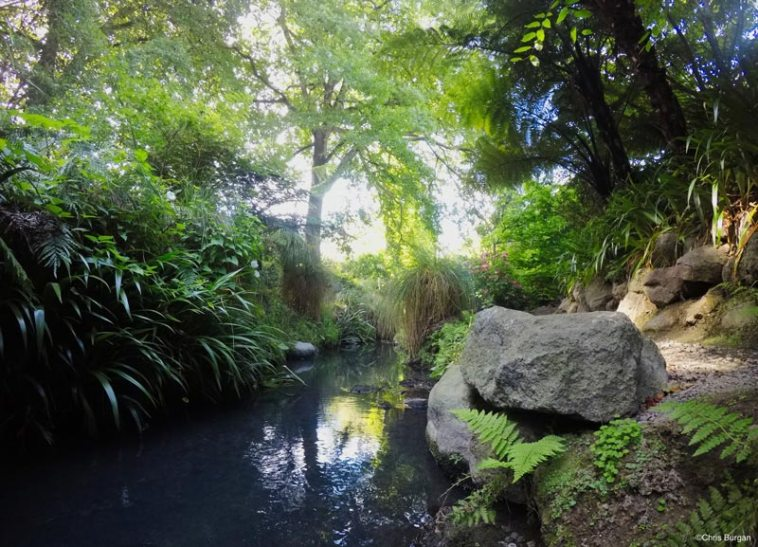 Botanical gardens in Christchurch, New Zealand