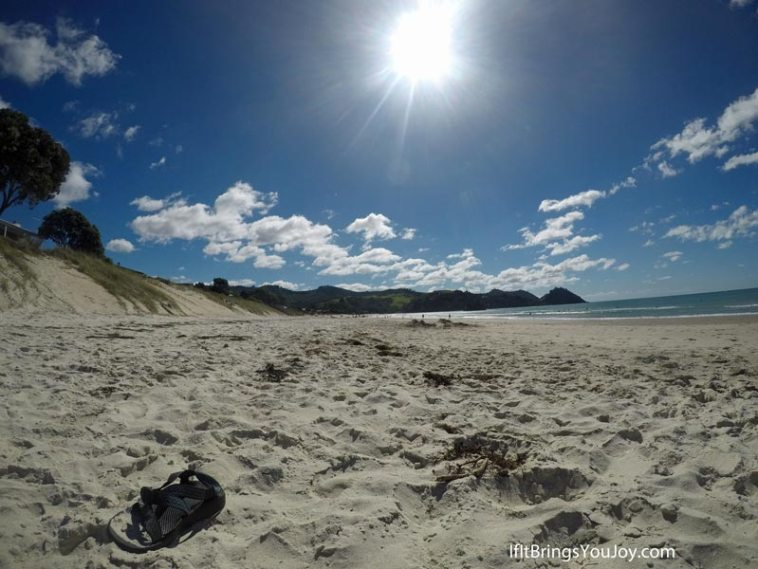 Beach scene in Coramandel, New Zealand