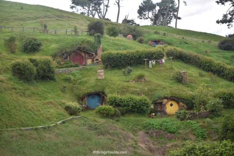 A hill of hobbit holes in Hobbiton, New Zealand