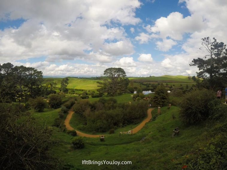 Looking down at the movie set in Hobbiton, New Zealand