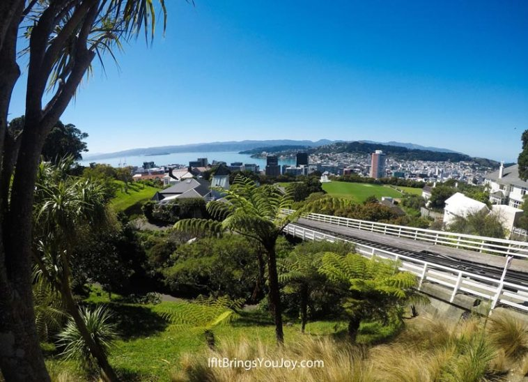 Beautiful view of Wellington, New Zealand