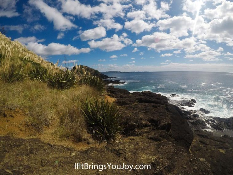Beautiful coastal scenery in Cape Reinga, New Zealand