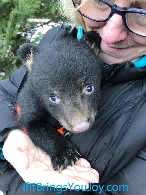 Ellen holding a bear cub