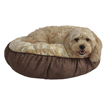 Happy dog in his own dog bed.
