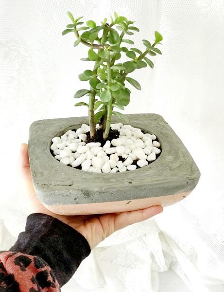 Hand made concrete planter