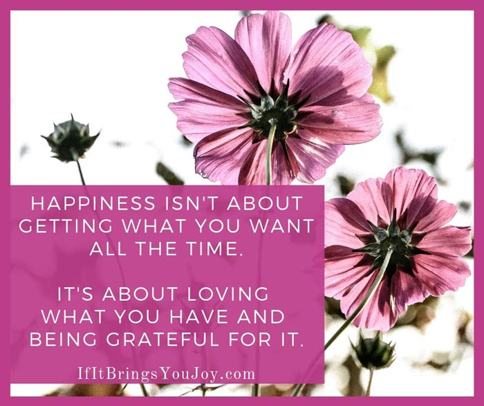 Happiness isn't about getting what you want all the time. It's about loving what you have and being grateful for it.