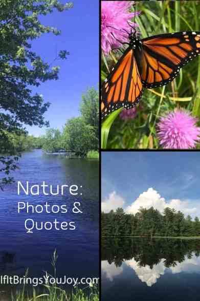 Photos of nature