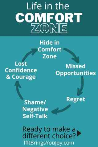 Consequences of life in the comfort zone diagram