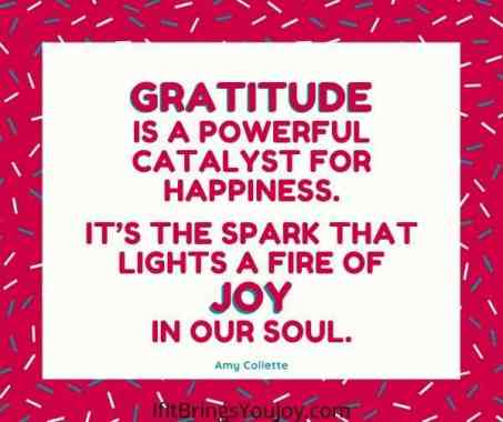 Quote about gratitude and joy by Amy Collette