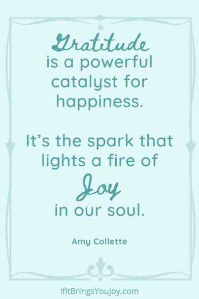 Quote by Amy Collette