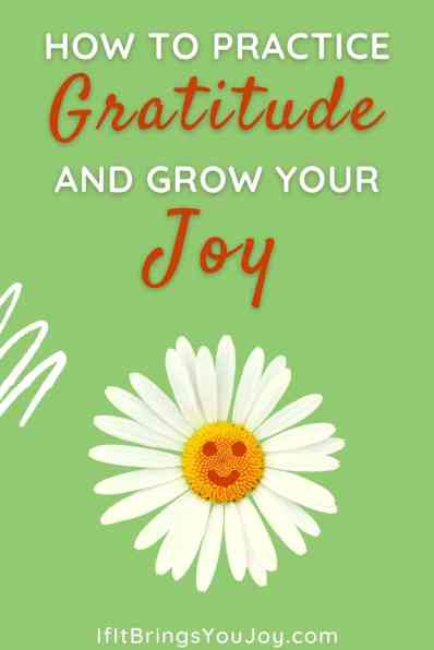 How to practice gratitude and grow your joy - with a daisy