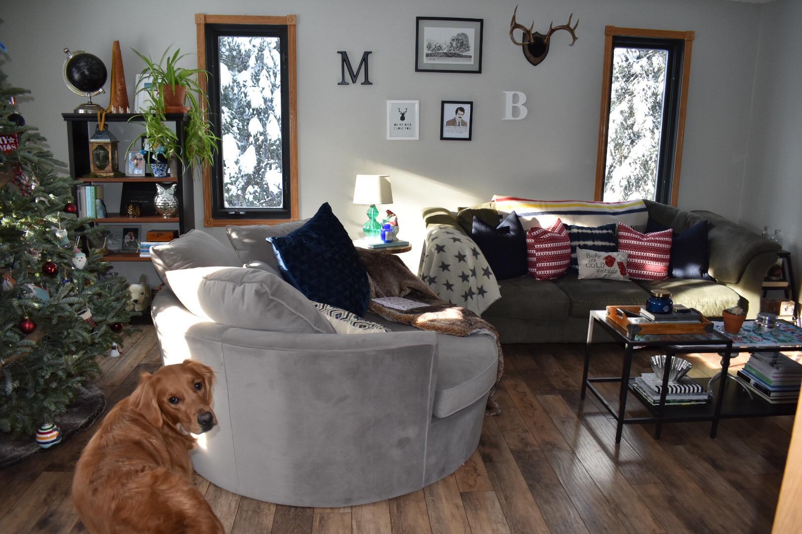 Urban Barn Living Room Chairs