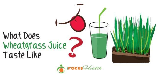 what does wheatgrass juice taste like