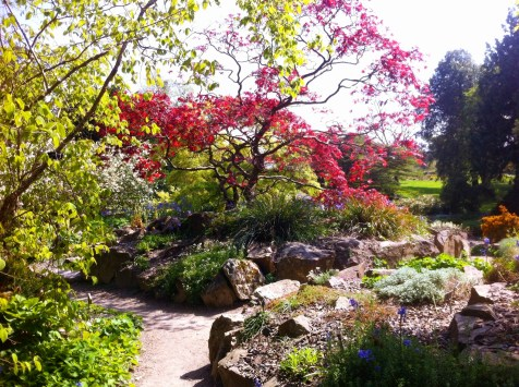 Botanical Gardens 7_edited