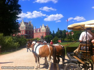 Looking for romance? Take a trip on a carriage. Or even better, hold your wedding in the park!