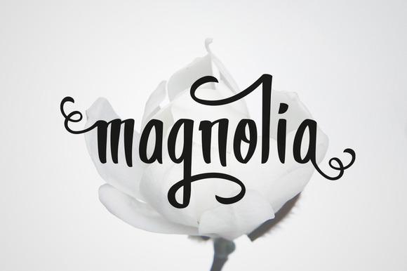 magnolia1-f