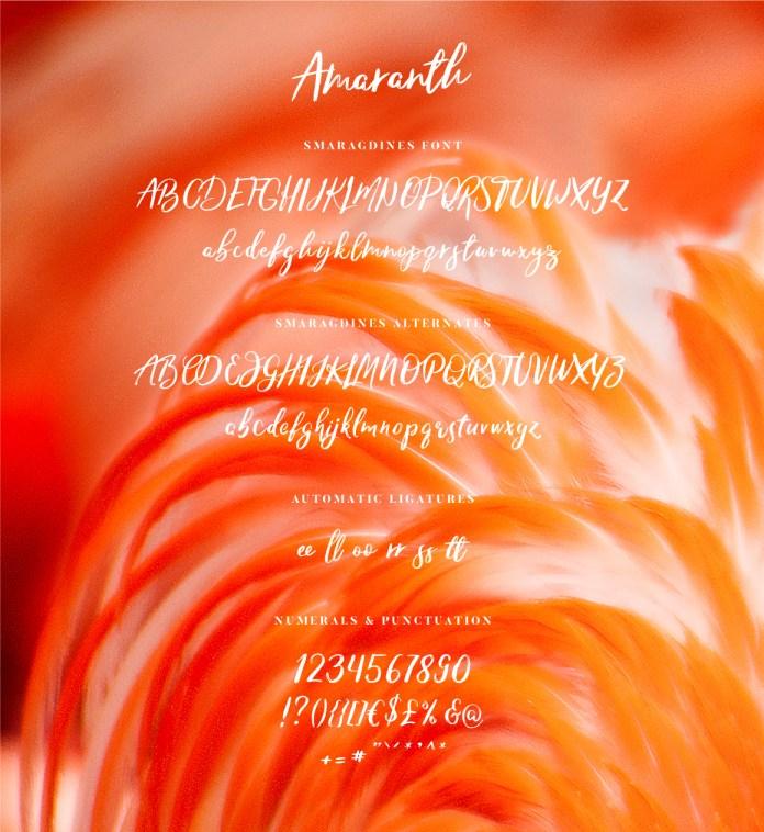 07-amaranth-all