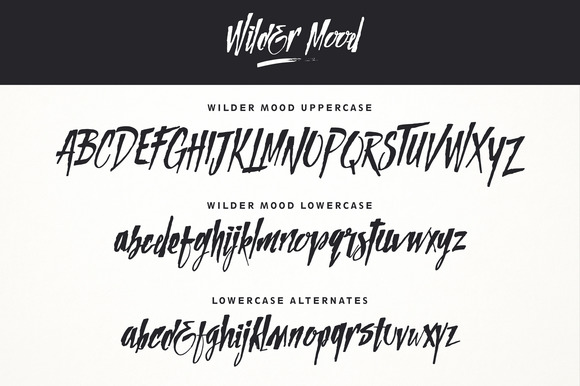 Wilder Mood Font