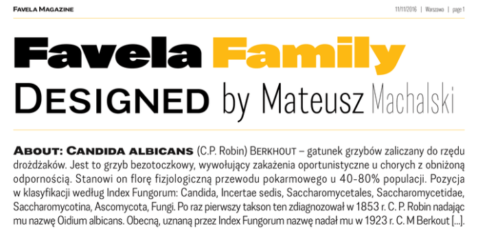 Favela Font Family