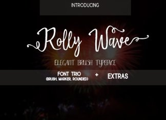Rolly Wave Script Font