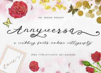 Anniversa - Wedding Font