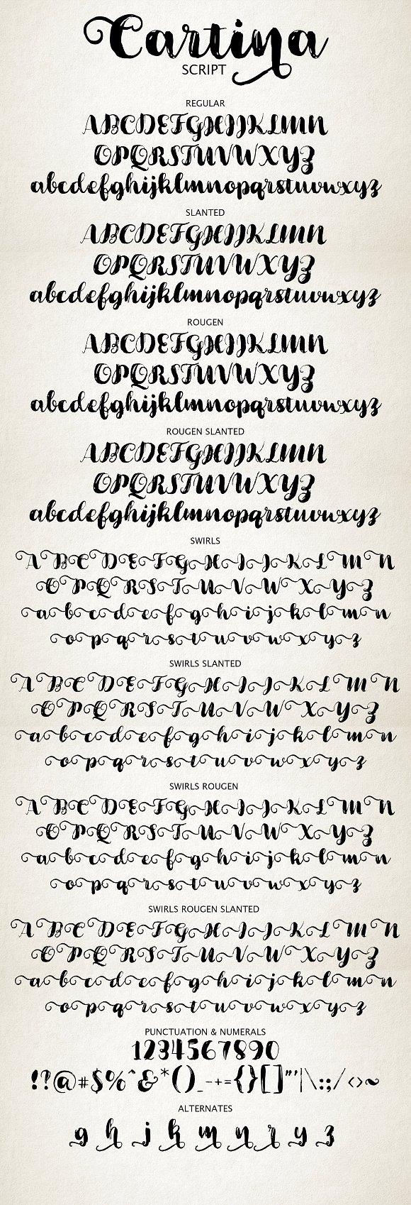 Cartina 8 in 1 Script Font