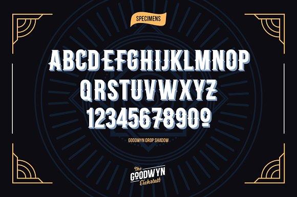 Goodwyn Retro Fonts Family