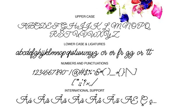 Glen & Coco Font + Bonus Font