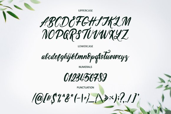 NEW! Soul Run Brush Font