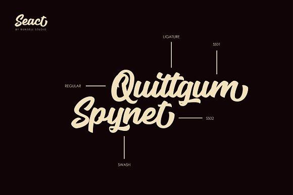 Seact Script Fonts