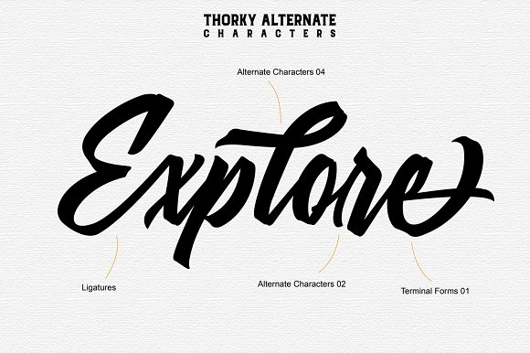 Thorky Display Font