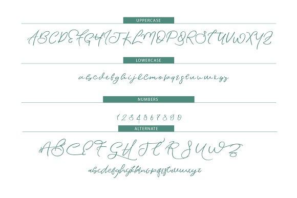 Waterlife Script Font